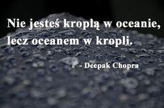 Wielkie Myśli.pl / cytaty, aforyzmy, wielkie myśli znanych ludzi. Deepak Chopra, Quotes, Quote, Quotations, Shut Up Quotes