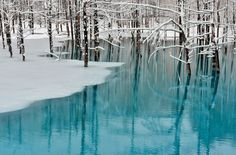 """The beautiful """"Blue Pond"""" in Hokkaido changes colors depending on the weather. See how this pond mimics the blue skies."""