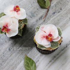 Moth orchid..buttercream flower cake Done by G.G.Cakraft. - #ggcakraft #buttercreamflowers #mothorchid #koreanflowercake #flowercakeclass #cake #cakeicing #buttercream #flowers #flowercake #buttercreamflowers #bakingclass #flowercakecourse #weddingcake #버터크림케이크 #ggcakraftinspain #buttercake #플라워케이크 #버터크림 #버터플라워케이크 #버터크림플라워케이크 #glossybuttercream
