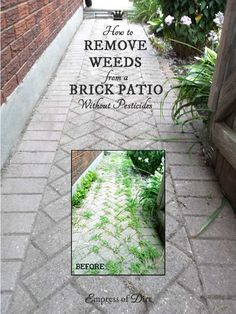 If you have a brick pathway, driveway, or patio, you know the curse. For as nice as they can look, all of those zillions of tiny spaces between the… Brick Driveway, Brick Pathway, Driveway Apron, Cobblestone Walkway, How To Kill Grass, Killing Weeds, Brick Sidewalk, Weed Killer, Brick Patios