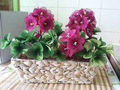 https://www.facebook.com/photo.php?fbid=1214239508616705
