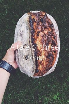 Check out this story by Raluca Micu on @stellerstories