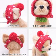 【Rakuten Ichiba】 【Chihuahua hat】 Strawberry Chihuahua knit cap 【Chihuahua small dog pet knit cap cosplay strawberry free shipping Pokkiri】: Chihuahua specialty store Skip dog!