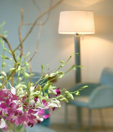 Achieve the perfect lighting - Learn how to choose lighting that'll create the perfect atmosphere and ambiance.