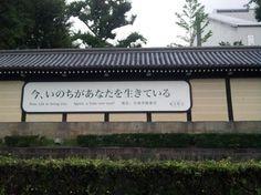 *  Higashi Honganji - Kyoto - Reviews of Higashi Honganji - TripAdvisor