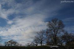 Árboles y nubes | Flickr: Intercambio de fotos