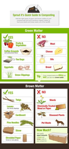 Easy visual reference for what you can and can't toss into your compost pile | Sprout it's Quick Guide to composting