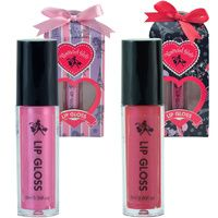 Lip Gloss - SOLD OUT
