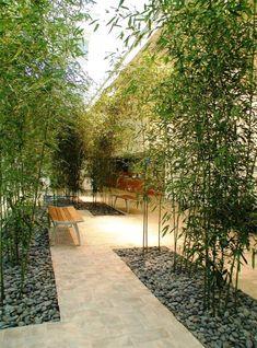 Bamboo-Interior-Designs-And-Crafts ~ bambus-interior-designs-and-crafts ~ ~ bamboo decor Green, Modern bamboo decor, Indoor bamboo decor Bamboo Landscape, Modern Landscape Design, Garden Landscape Design, Modern Landscaping, Backyard Landscaping, Landscaping Design, Indoor Garden, Outdoor Gardens, Indoor Bamboo