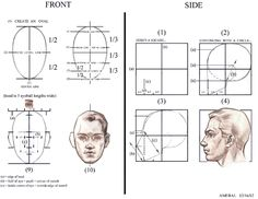 More proportion stuff. Very old handout. Drawn at least 7 years ago. I had the wonderful opportunity to teach for David Hardy in Oakland, California  7 - 8 years ago before I returned to the FAA in 2002. The idea of using a box to better understand the proportions of the face when considering the profile was taught to me by Vince Perez.