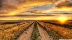 country_road_at_HDsunsetwallpaper1920x1080.jpg 1,920×1,080 pixels