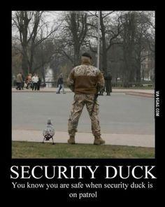 Security Duck. Enough said.