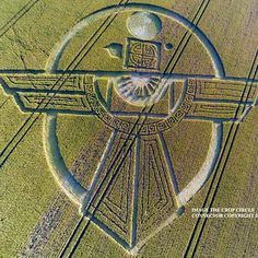 Crop Circle at Barbury Castle, Broad Hinton, Wiltshire, UK - 25 July 2015....This is the EGYPTIAN symbol of the Pagan God, HORUS or RA.