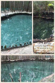 Excusrion: El Corchito Progreso, Mexico http://www.whenshiphappens.com/blog/2015/01/progreso-excursions-and-spanglish.html
