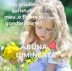 Good Morning, Reading, Buen Dia, Bonjour, Good Morning Wishes