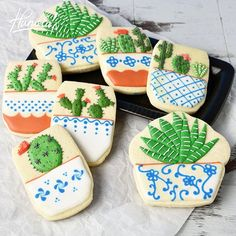 Succulent Cookies Step by step instructions are on my you tube channel…