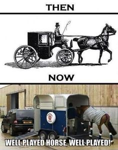 Well played meme joke pic... For more hilarious humor and great jokes visit www.bestfunnyjokes4u.com/lol-funny-cat-pic/ Hippodrome, Double Poney, Horse Quotes, Tack, Courses Hippiques, Massage, Horses, Funny, Barrel Racing