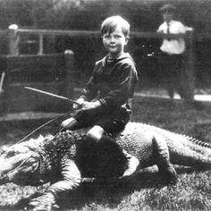 Free Alligator rides.