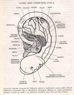 … pomóż sobie masażem ucha … | Medycyna naturalna, nasze zdrowie, fizyczność i duchowość