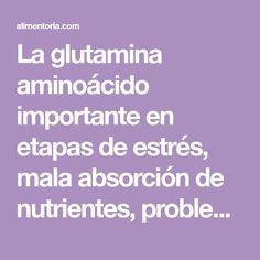 La glutamina aminoácido importante en etapas de estrés, mala absorción de nutrientes, problemas intestinales, gases y fermentación.
