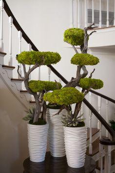 Zen-Cool Entry piece Reindeer moss Brad Austin Imaginative Florals.