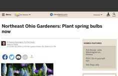 http://www.cleveland.com/insideout/index.ssf/2008/10/plant_bulbs_now_and_enjoy.html