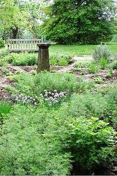 herb garden #www.savioengineering.com