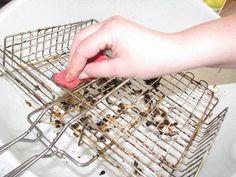 Bicarbonatul de sodiu este un adevărat rege al curățeniei: 22 de moduri de utilizare. - Fasingur How To Dry Basil, Ale, Herbs, Tips, Advice, Ales, Herb