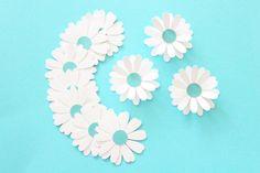 Daisy flower - Daisy wall art - Daisy Confetti - Flower confetti - Confetti…