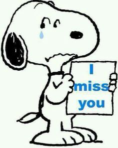 Snoopy tears...