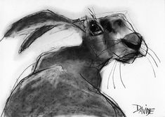 Original drawings by best selling artist Valerie Davide are available as greetings cards. Photo Art, Animal Art, Fine Art, Animal Drawings, Illustration Art, Rabbit Art, Art, Bunny Art, Animal Paintings