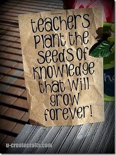 Teachers Plant the Seeds of Knowledge