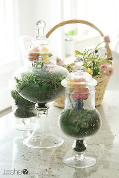 How To Create Magnificent Floral Terrariums! A perfect decoration for Easter. Elegant look, adds beauty to your home! #DIYready