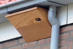 Bird House Plans 379991287310037766 - Action for Swifts: DIY Swift box designs — range of free plans Source by Bird House Plans, Bird House Kits, Owl House, Homemade Bird Houses, Bird Houses Diy, Robin Nest Box, Wood Projects, Woodworking Projects, Bird House Feeder