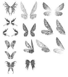 Variety of fairy wings to work with.