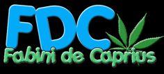 Support Fabini De Caprius creating Videos