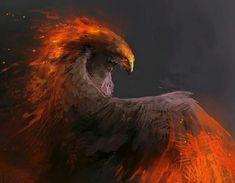 Fire Bird Sketch by Sally Gottschalk on ArtStation. Creature Concept Art, Creature Design, Fantasy Beasts, Fantasy Art, Bird Sketch, Phoenix Art, Mythological Creatures, Bird Drawings, Fantasy Inspiration