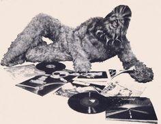 Wookie vinyl