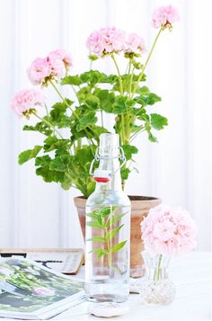 Love me those pink flowers!