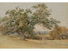 Oak Tree (by a follower of Nathaniel Green)