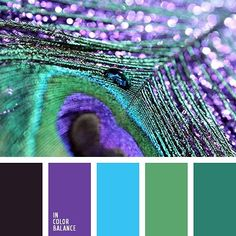 Farbpaletten Color Palette inspires you to decorate your house, flat, bedroom, kitchen, living Peacock Color Scheme, Purple Color Schemes, Color Schemes Colour Palettes, Peacock Colors, Color Combos, Peacock Feathers, Peacock Blue, Turquoise Color Palettes, Green Colour Palette