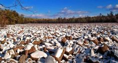 Boulder Field in Hickory Run State Park, Carbon County | © Nicholas A. Tonelli/Flickr