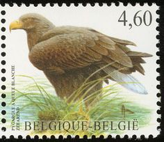 White-tailed Eagle stamps - mainly images - gallery format
