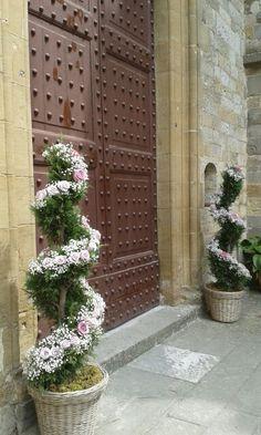 Matrimonio. Alberelli a torciglione con rose e gypsophila per esterno chiesa. Priscilla e Matteo. Badia a Passignano. Aprile 2015