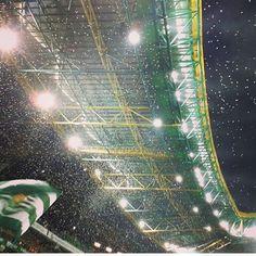 Já cá estamos, já cá estamos, já cá estamos outra vez vamos derrotar o Legia como da primeira vez...! #omundosabeque #TuVaisVencer Real Madrid Manchester United, Best Club, Bus Travel, Soccer, Sports, Scp, Lisbon, Barcelona, Men's Fashion
