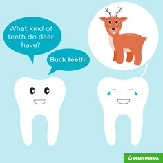 Oh deer…. Is our dental humor punny? We hope so! If you love dental jokes as m… Cheesy Jokes, Corny Jokes, Funny Jokes For Kids, Dad Jokes, Dentist Jokes, Cas, Dental Life, Jokes And Riddles, Emergency Dentist
