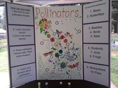 At Farm Day - Ag in the Classroom at Nevada County Fairgrounds which was attended by 700 school children, Youth Programs Director Christy McCracken led an activity demonstrating with glitter how pollen is transferred from flower to flower by pollinators in conjunction with BYLT's Pollinator Project.