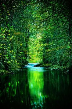 Emerald river, Rio Verde, Texas (by Katya Horner)