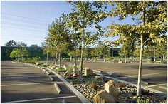 Parking Lot Landscaping Google Search Car Park Design E