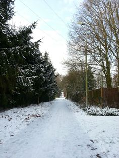 #alley #walkinghome #winter #snow #houthalen